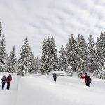 Winterwandern und Langlaufen