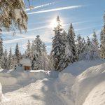 Winterweitwandern-Seefeld